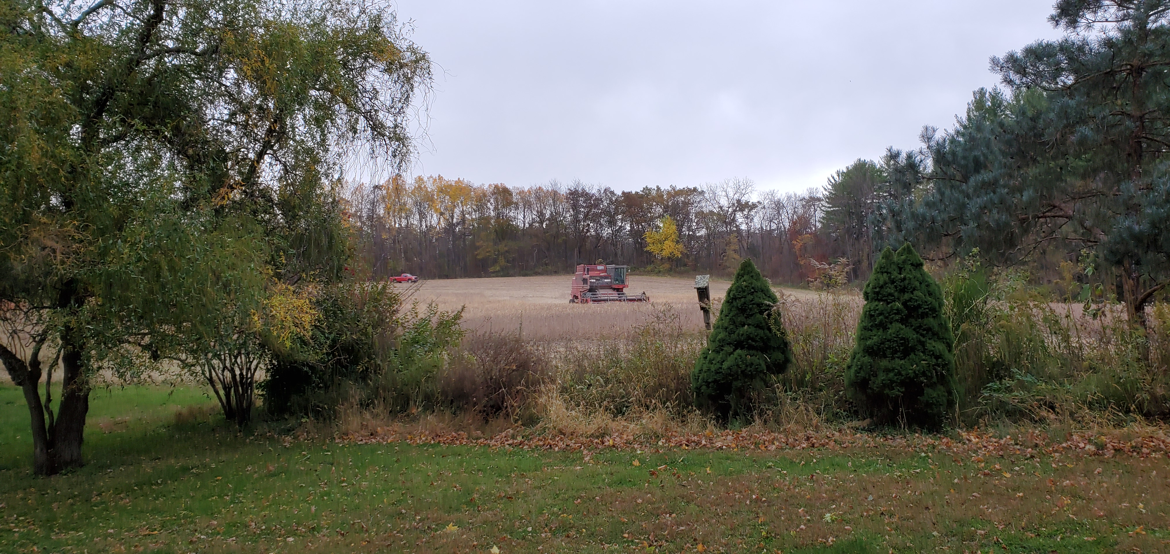 the field being harvested